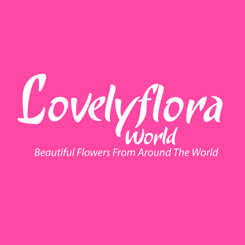 Lovely Flora World Online Shopping Secrets